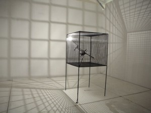 Slow Arc Inside a Cube I [2007]