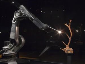 Trophy [2012]