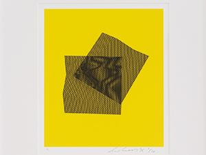 Surface Disruption Prints [2016]